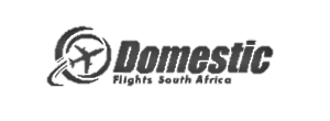 domestic flights logo