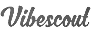 vibescout logo